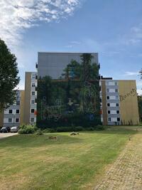 Kunst auf der Fassade - Van Gogh bis Macke – Anspruchsvolle Aufwertung bei umfangreicher Sanierung in Dortmund-Westerfilde