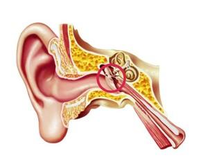 Ursachen im Mittelohr