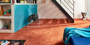 Schutz vor Schmutz: Der Sauberlauf!