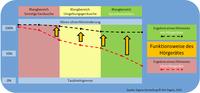 Grafische Darstellung der Funktionsweise eines Hörgerätes