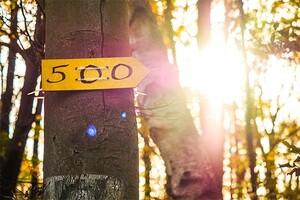 Die Steinhart500-Strecke ist ausgeschildert!