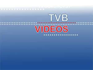 Online-Videos!