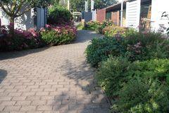 Gartenpflege Außenanlage Rietberg-Varensell